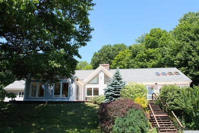 New Lebanon Single Family Home For Sale: 100 Temple Hill Rd