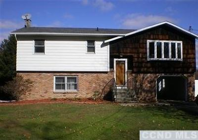 Columbia County Single Family Home For Sale: 4 Pats Lane