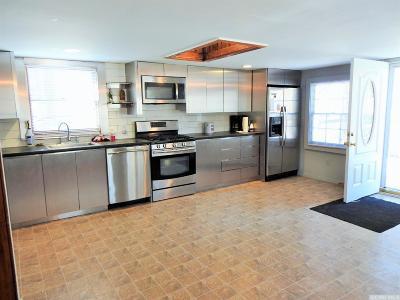 Cairo NY Single Family Home For Sale: $139,000
