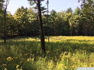 East Nassau NY Residential Lots & Land For Sale: $53,500