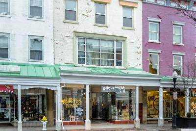 Kingston NY Commercial For Sale: $1,595,000