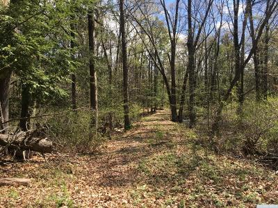 Dutchess County Residential Lots & Land For Sale: Grouse Run