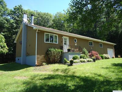 Cairo NY Single Family Home For Sale: $205,000
