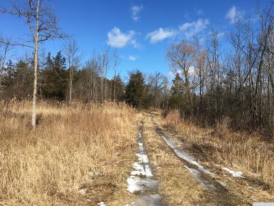 Germantown NY Residential Lots & Land For Sale: $42,000