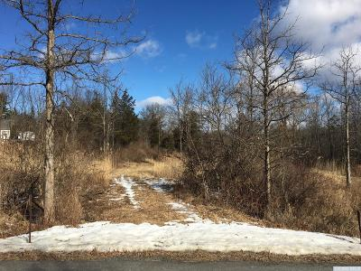Germantown NY Residential Lots & Land For Sale: $34,000