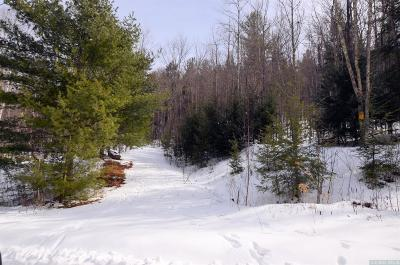 Lexington NY Residential Lots & Land For Sale: $55,000