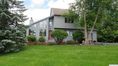 Athens NY Single Family Home For Sale: $485,000