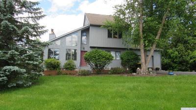 Greene County Single Family Home For Sale: 36 Dutchman Drive
