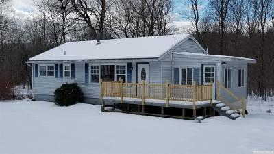 Freehold NY Single Family Home For Sale: $139,000