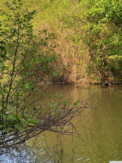 Coxsackie NY Residential Lots & Land For Sale: $16,000