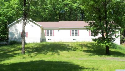 Greenville NY Single Family Home For Sale: $255,000