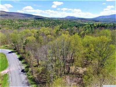 Jewett Residential Lots & Land For Sale: 557 Merwin Street