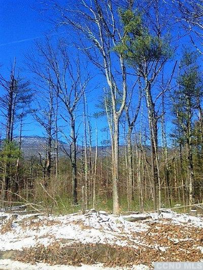 Catskill NY Residential Lots & Land For Sale: $59,900