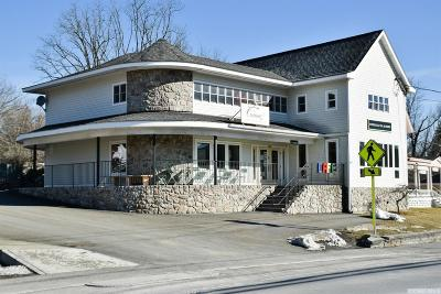 Hillsdale Commercial For Sale: 2633 Route 23