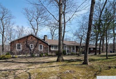 Dutchess County Single Family Home For Sale: 399 Mill Road