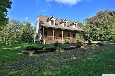 Rensselaer County Single Family Home For Sale: 28 Lower Bower Road