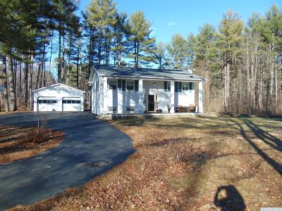 Greene County Single Family Home For Sale: 9634 State Route 32