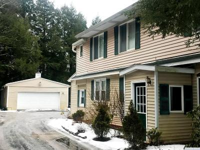 Windham NY Single Family Home For Sale: $279,000