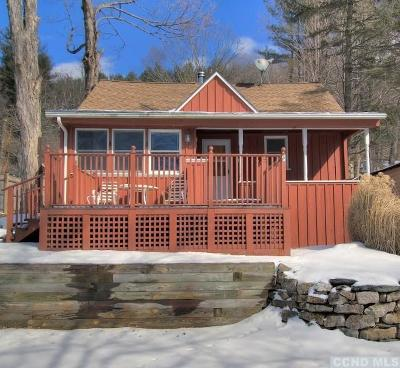 Copake Single Family Home For Sale: 14 Pine Street