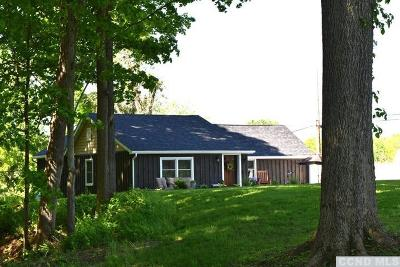 Rhinebeck Single Family Home For Sale: 177 White Schoolhouse