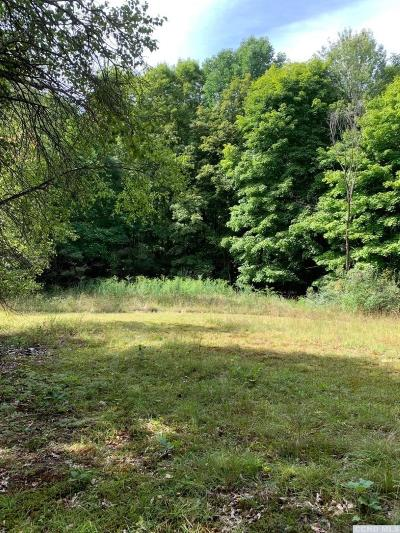 Taghkanic Residential Lots & Land For Sale: County Route 27