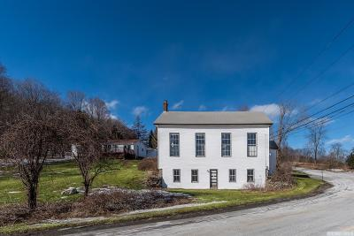 Columbia County Single Family Home For Sale: 1261 County Route 5