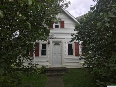 Albany County Single Family Home For Sale: 288 County Route 402