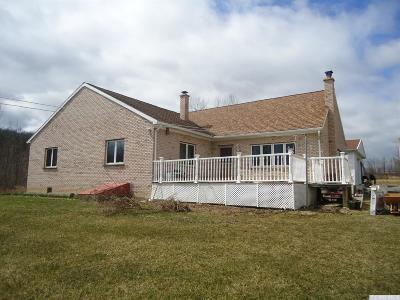 Durham Single Family Home For Sale: 3915 Route 145