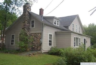 Windham NY Multi Family Home For Sale: $200,000