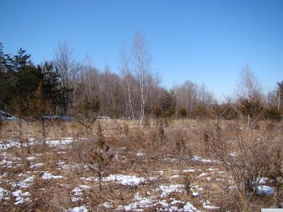 Gallatin NY Residential Lots & Land For Sale: $192,000