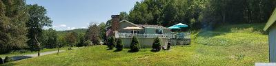 Single Family Home For Sale: 345 Pumpkin Hollow Rd N.
