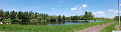 Gilboa NY Residential Lots & Land For Sale: $50,000