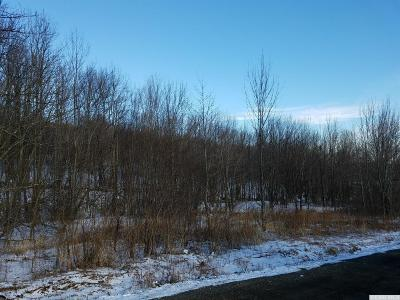 Roxbury NY Residential Lots & Land For Sale: $143,000