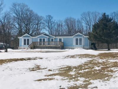 East Durham NY Single Family Home For Sale: $169,000