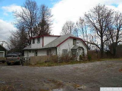 Livingston NY Commercial For Sale: $169,000
