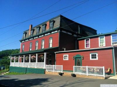 Hillsdale NY Commercial For Sale: $895,000