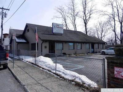 Catskill NY Commercial For Sale: $259,900