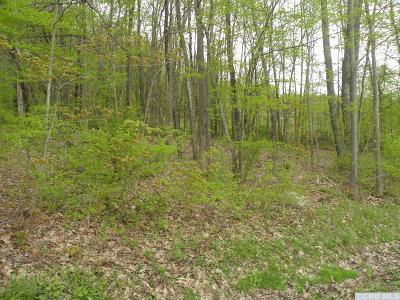 Ancram NY Residential Lots & Land For Sale: $25,000