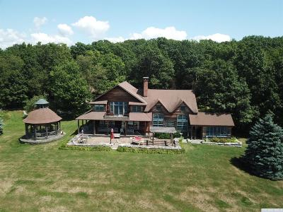 Dutchess County Single Family Home For Sale: 389 Skunks Misery Road