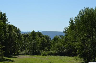 Dutchess County Residential Lots & Land For Sale: Scribner Road