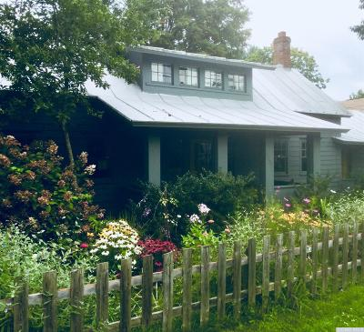 Chatham Single Family Home For Sale: 4253 State Route 203