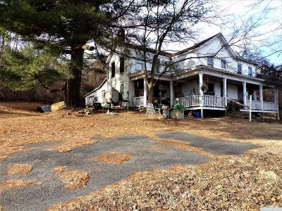Greene County Single Family Home For Sale: 8863 Route 9w