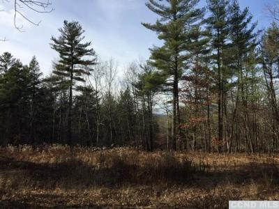 Coxsackie NY Residential Lots & Land For Sale: $42,000
