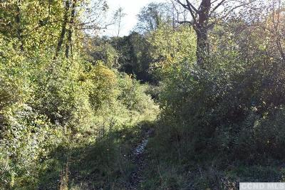 Rhinebeck NY Residential Lots & Land For Sale: $595,000