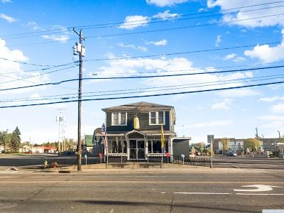 Catskill NY Commercial For Sale: $285,000