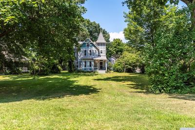 Columbia County Single Family Home For Sale: 168 Hudson Avenue