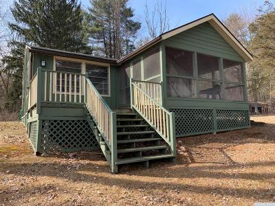 Dutchess County Single Family Home For Sale: 4 Alice Way