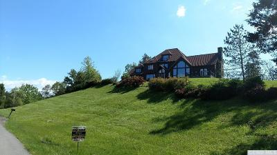 Rhinebeck NY Single Family Home For Sale: $550,000