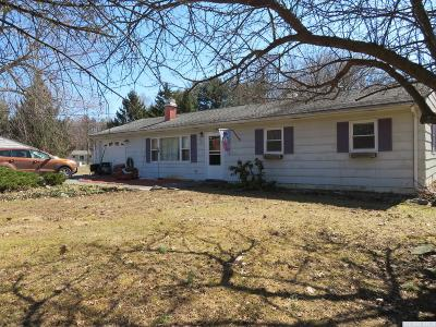 Kinderhook Single Family Home For Sale: 32 Robin Road