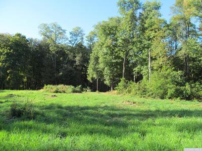 Dutchess County Residential Lots & Land For Sale: 32 Guski Road